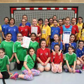 Wiener Meisterschaften Handball
