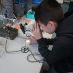 Mikroskopieren wie echte Profis.