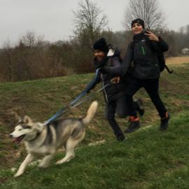 Huskywanderung (UÜ Bergwandern)