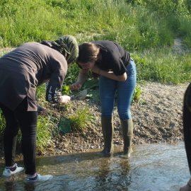 WPF Biologie: Gewässerökologische Exkursion