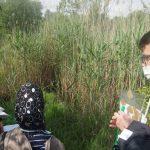 Auf Amphibien-Suche