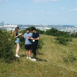 7AB WPF-Biologie: Narrenturm und Perchtoldsdorfer Heide