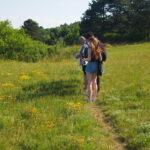 Auf dem Weg zur Perchtoldsdorfer Heide